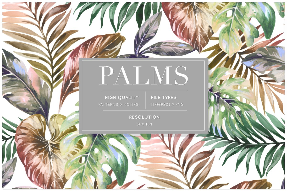 Palms, Lush Tropical Patterns & Set