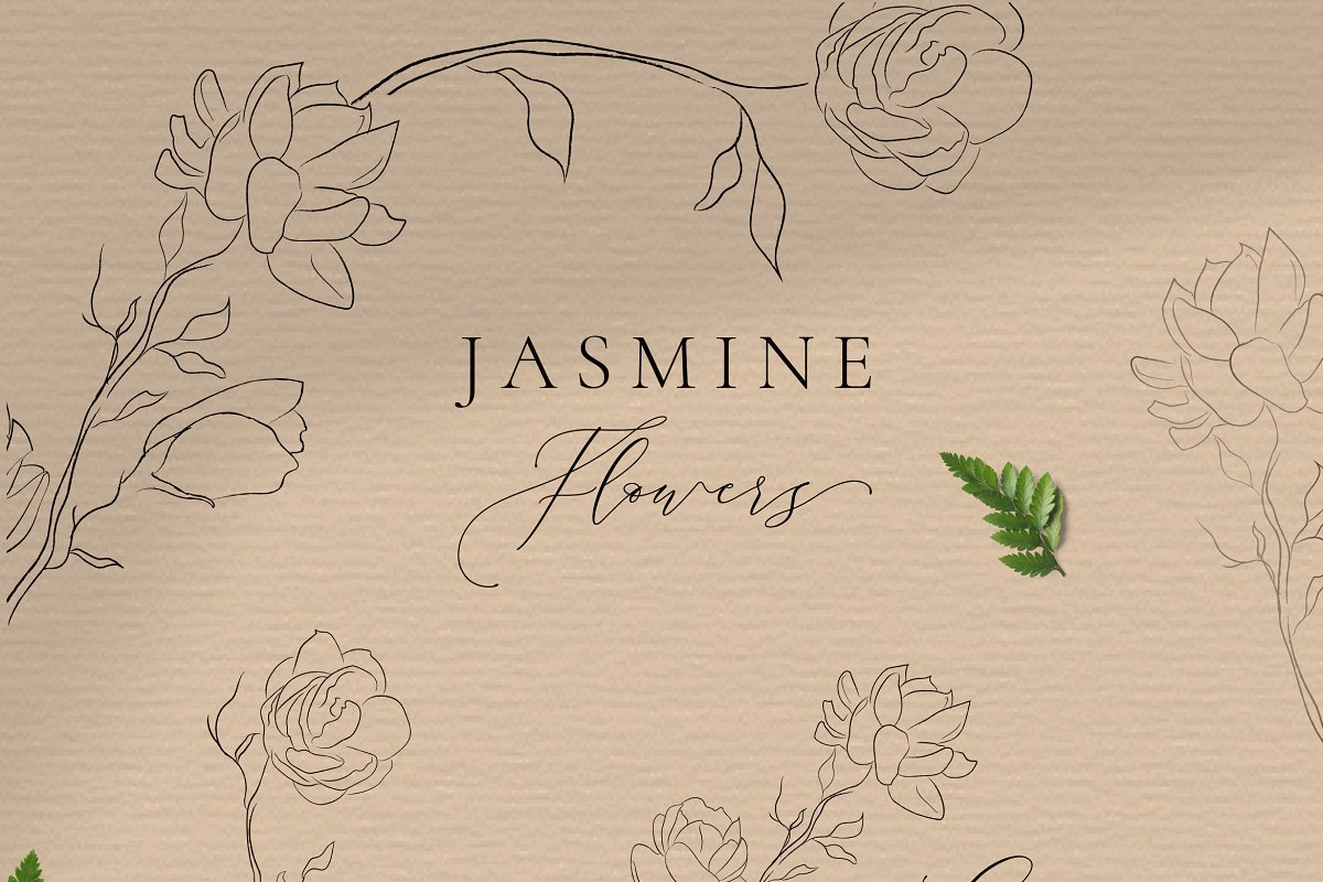 Jasmine Flowers Line Art Elements